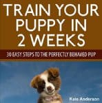 Train-Your-Puppy-in-2-Weeks