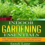 Indoor-Gardening-Essentials-Herbs-and-Vegetables