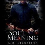 Soul-Meaning-Seventeen-Book-One