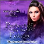 Protected-by-the-Falcon