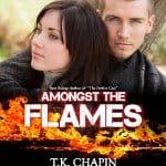 Amongst-the-Flames