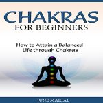 Chakras-for-Beginners