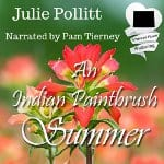 An-Indian-Paintbrush-Summer