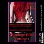 Bondage-Bliss-Volume-1