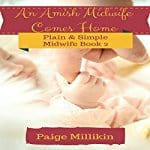 An-Amish-Midwife-Comes-Home