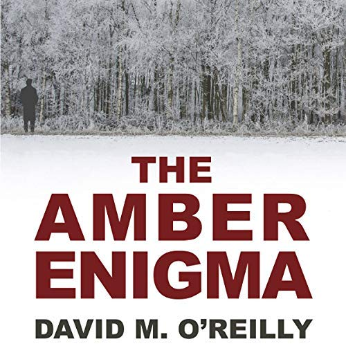 The-Amber-Enigma