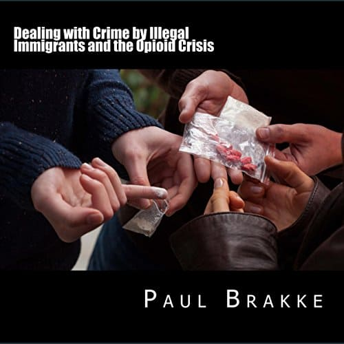 Dealing-with-Crime-by-Illegal-Immigrants