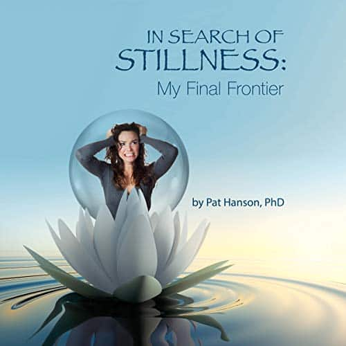 In-Search-of-Stillness
