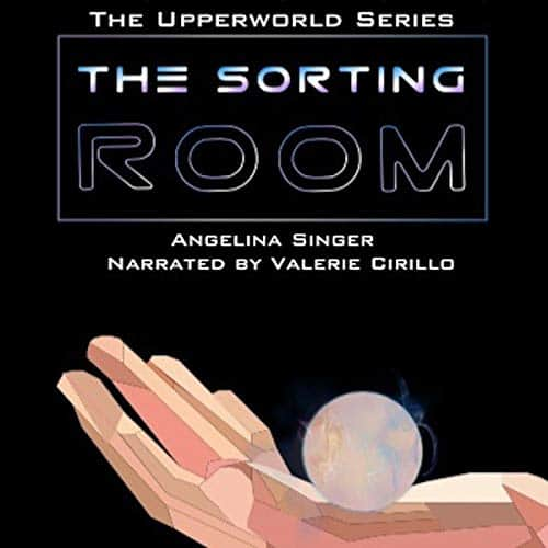 The-Sorting-Room