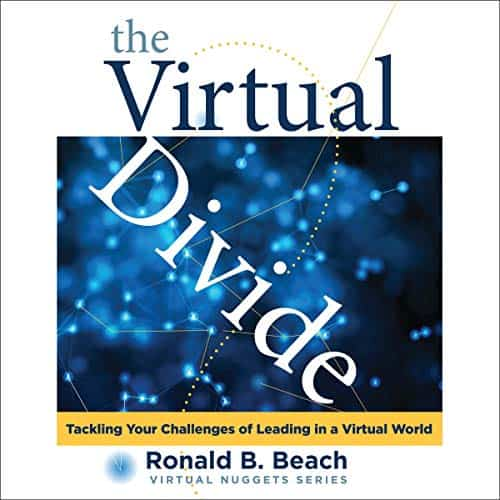 The-Virtual-Divide