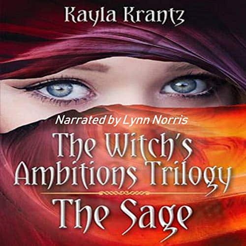 The-Sage-Witchs-Ambitions