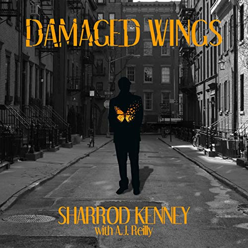 Damaged-Wings
