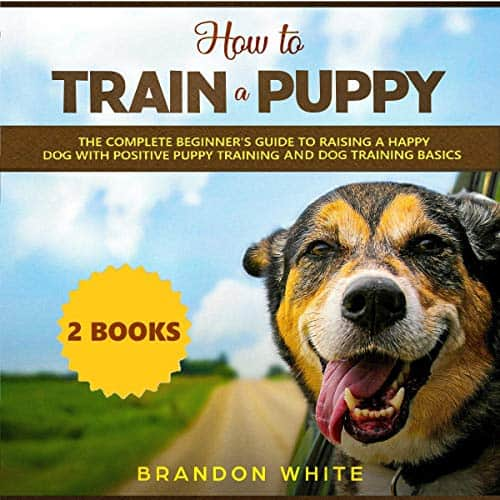 How-to-Train-a-Puppy-2-Books