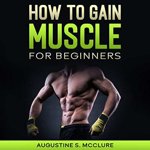 How-to-Gain-Muscle-For-Beginners