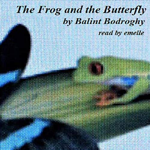 The-Frog-and-the-Butterfly