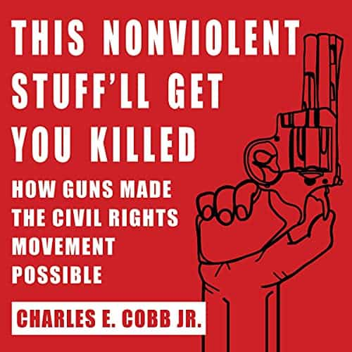 This-Nonviolent-Stuffll-Get-You-Killed